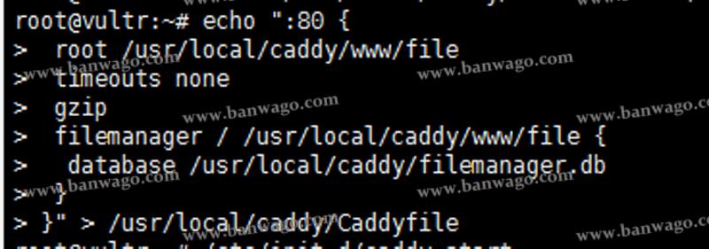 基于Caddy的扩展在搬瓦工VPS上安装FileManager搭建个人网盘
